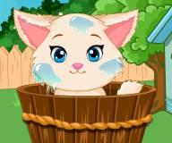 Забота о милом котенке