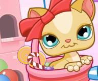 Конфеты кошки