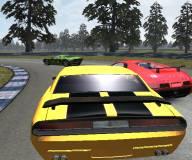 Игры гонки:Скоростные гонки профессионалов v1