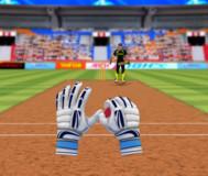Крикет принимающий игрок