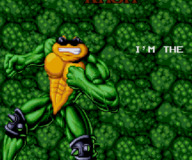 Battletoads:Battletoads and Double Dragon Sega