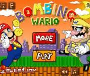 Игры Марио:Марио и Варио